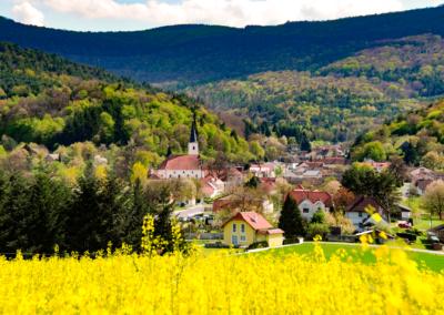 Rattersdorf (mit Wallfahrtskirche) im Juni