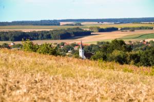 Blick über Mannersdorf an der Rabnitz