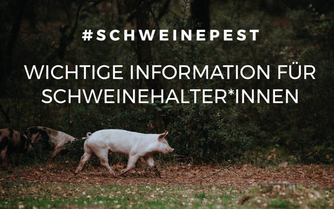 #schweinepest – Wichtige Information für Schweinehalter*innen im Burgenland